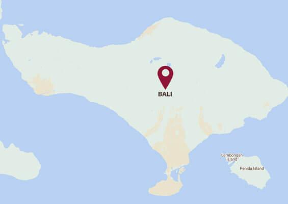 Volunteer In Bali Most Affordable Volunteer Programs Volsol