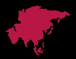 Voluntario en Asia